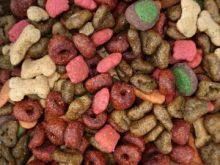 Nejlépe hodnocené krmivo pro psy